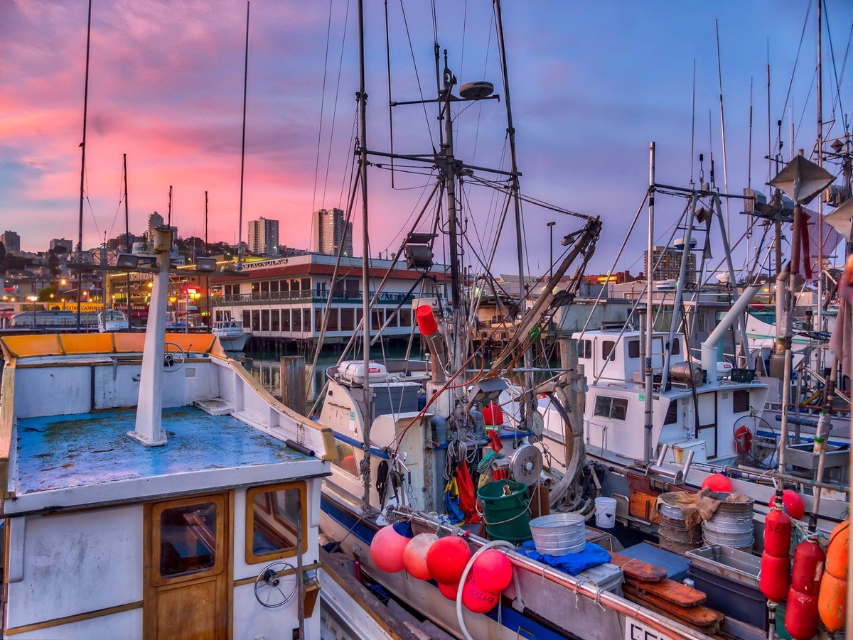 Fishman's Wharf, San Francisco 001. It's around sunrise. The sky is pink. There are fishing boats in the foreground,.